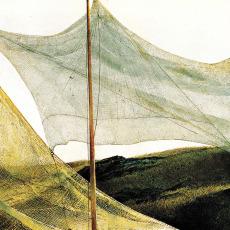 Andrea Molesini presenta 'Dove un'ombra sconsolata mi cerca'